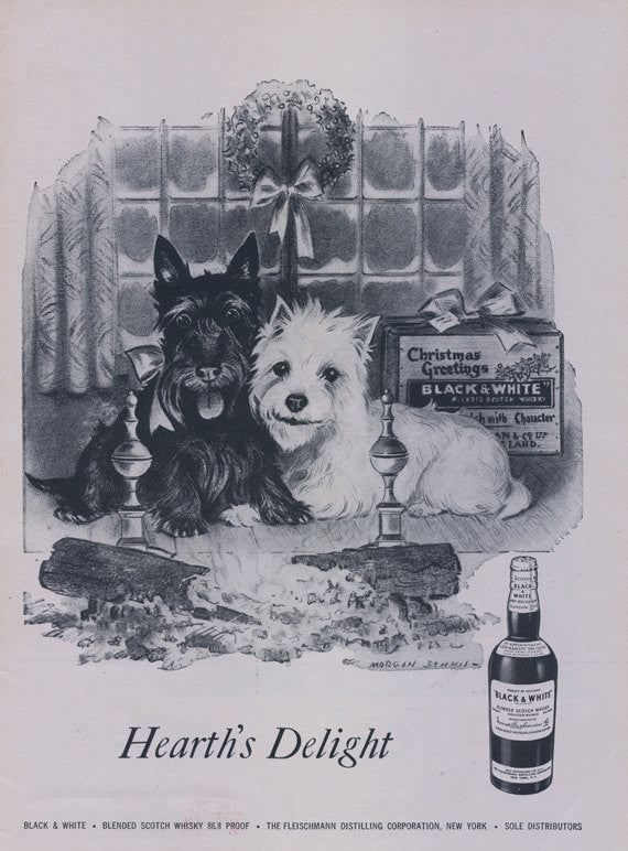 1957 Black & White Scotch Whisky Ad Westie Dog Scottish Terrier Christmas Holiday Advertising Mid Century Print Bar Wall Art - Gift for Her