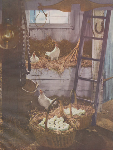 1940s Chickens and Baskets of Eggs Country Kitchen Decor Purple Farmhouse Wall Art Print, Rustic Barn Hens Roosters Magazine Photo Print