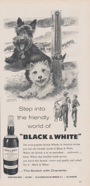 1960 Black & White Scotch Whiskey Ad Scottish Terrier and Westie Dogs Illustration Vintage Advertisement Cute Wall Art Decor
