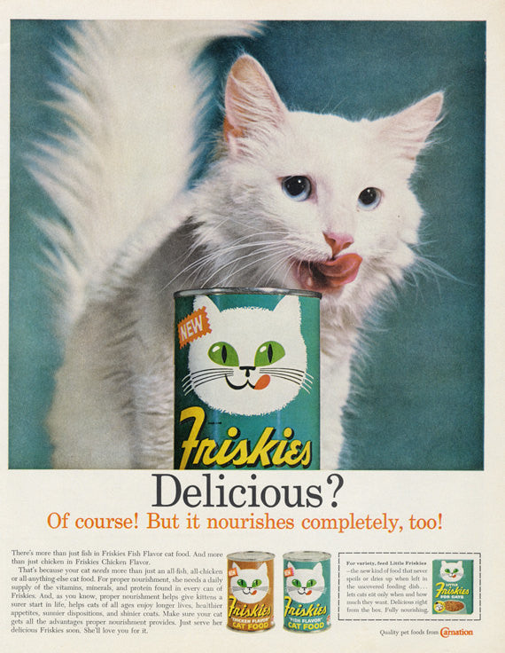 Friskies Cat Food Ad White Cat Photo Print Original 1960s Vintage Advertising Cute Wall Art Decor