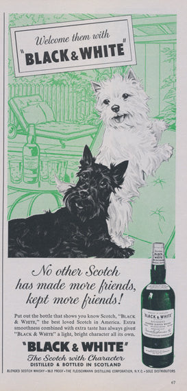 1961 Black & White Scotch Whiskey Vintage Advertisement Scottish Terrier and Westie Dogs Cute Illustration Print Ad Green Wall Art Decor