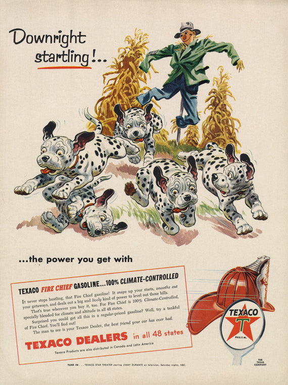 1955 Texaco Gasoline Ad Scarecrow Dalmatian Dogs Puppies Illustration Vintage Advertising Art Print Fall Autumn Wall Decor