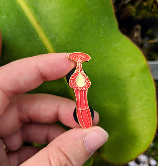 Nepenthes edwardsiana *COLLECTABLE ENAMEL PIN*