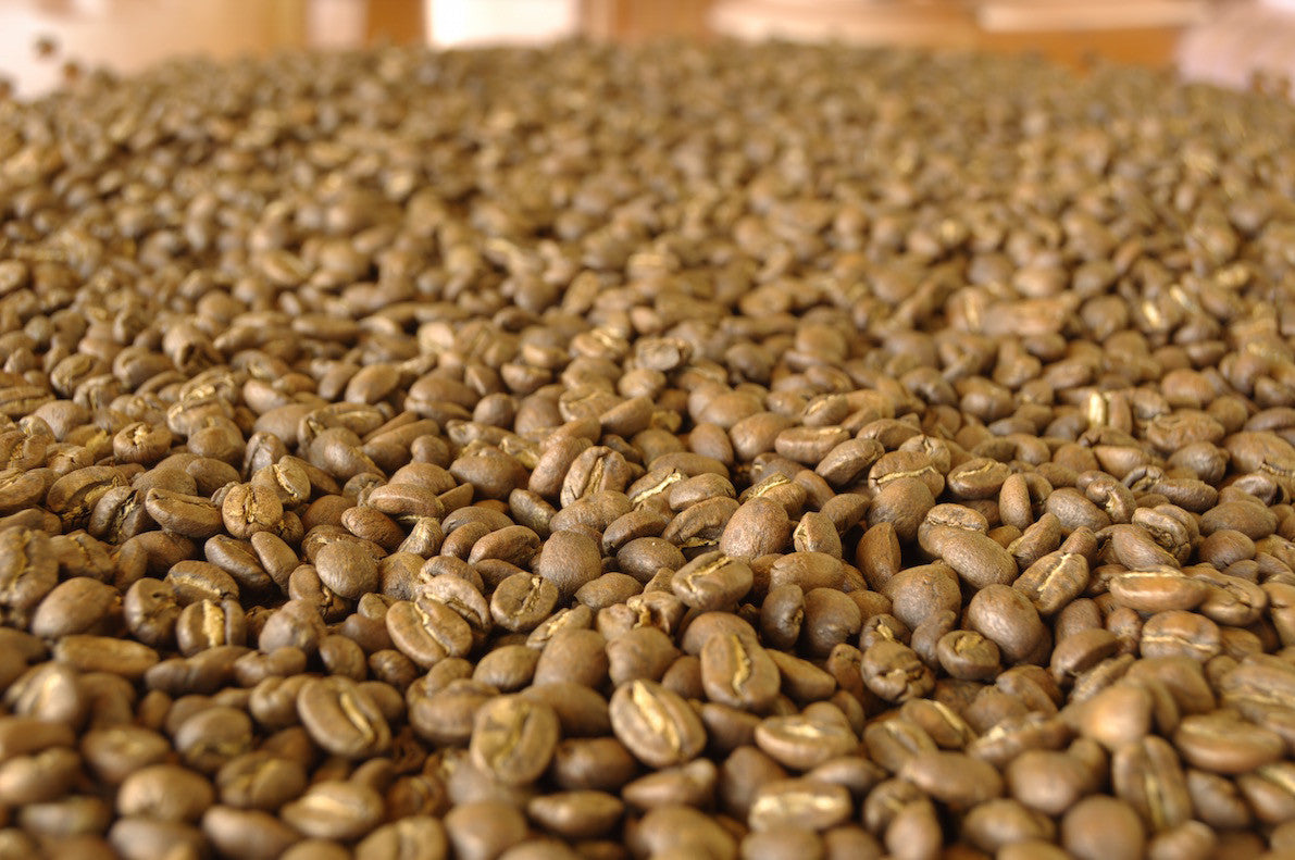 Colombia Andino: soft brew, filter, french press roast