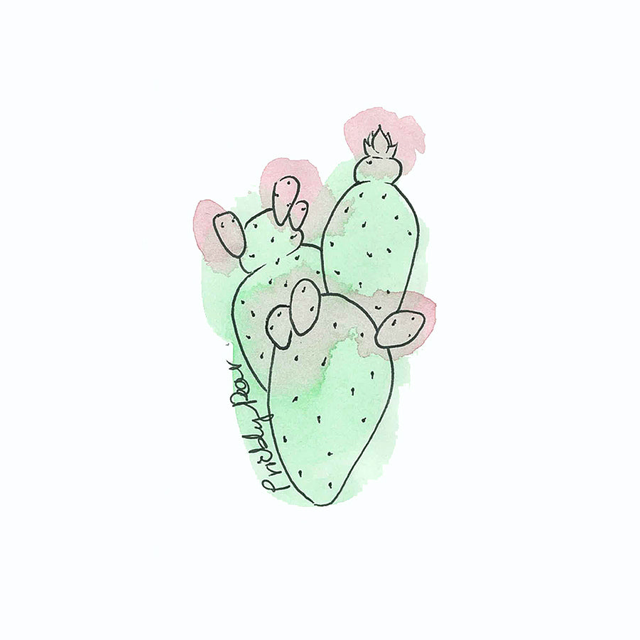 Prickly Pear Illustration