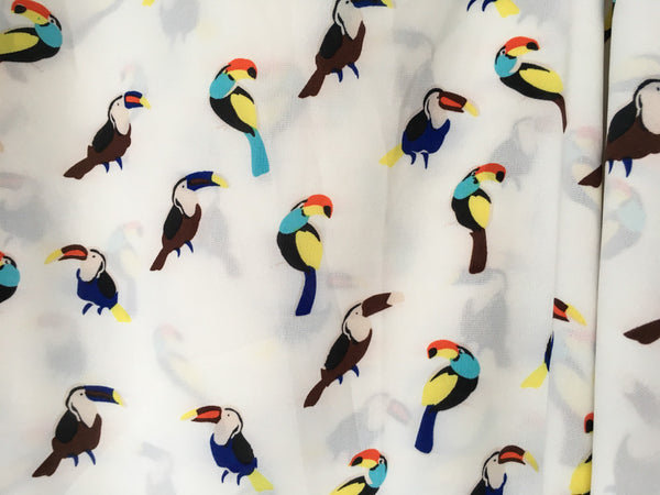 Toucans with blue colourful ribbon