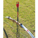 PSE Ground Quiver/Bow Holder for Backyard Shooter Recreation Camping Recurve Bow