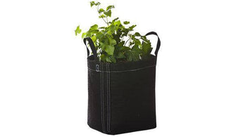 SET OF FOUR Indoor Growing Soil Pots—GeoPots with Handles