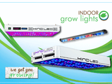 KIND LED makes the best indoor grow lights for sustainable and organic indoor gardening.