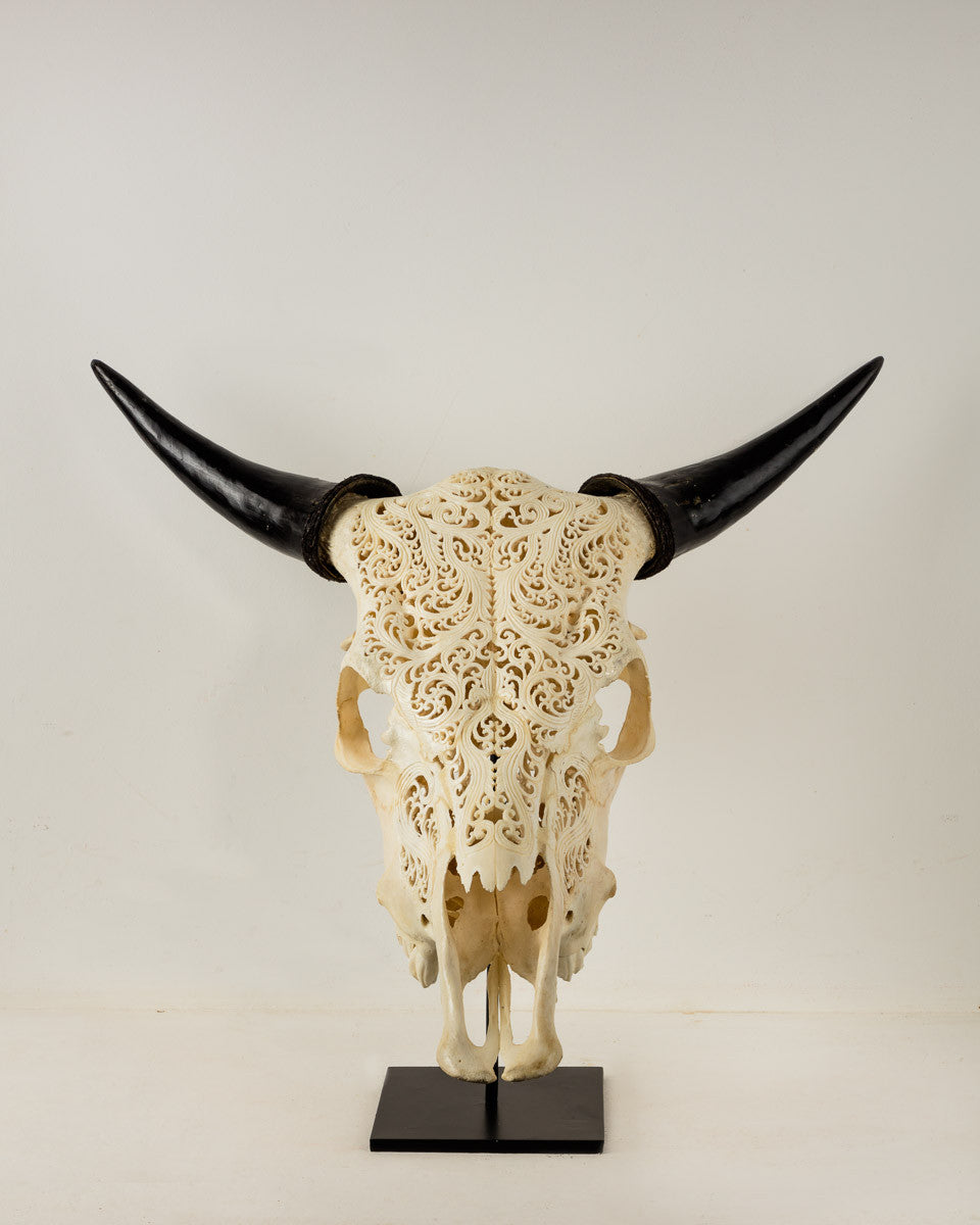 Decorative Impala Skull