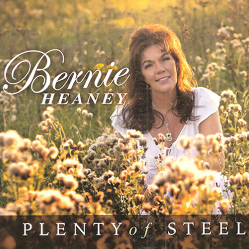 Plenty of Steel - Bernie Heaney