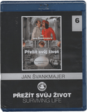 Surviving Life/Prezit svuj zivot