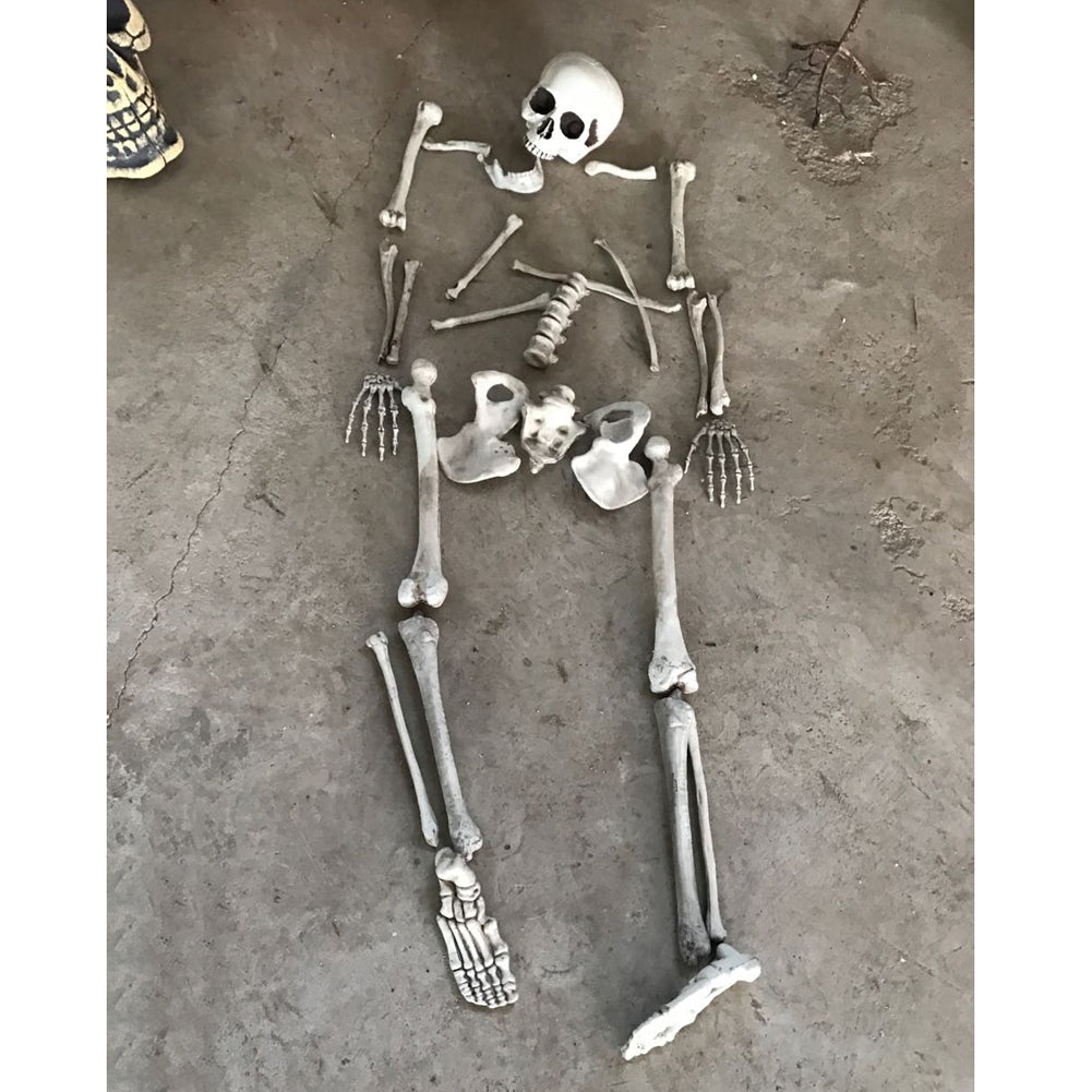 Halloween Party Decoration Horror Artificial Human Skeletons