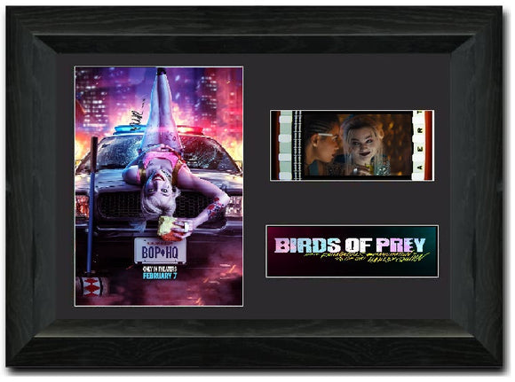 Birds of Prey 35mm Framed Film Cell Display
