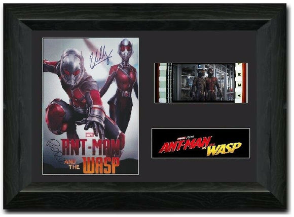 AntMan and the Wasp S2 35mm Framed Film Cell Display Signed