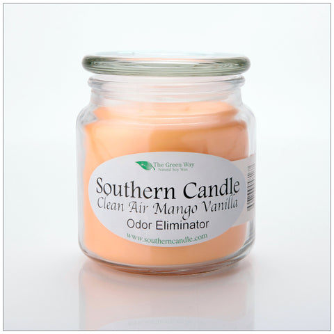 Carolina Ocean Wind 16 oz Decorator Jar Natural Soy Wax Candle