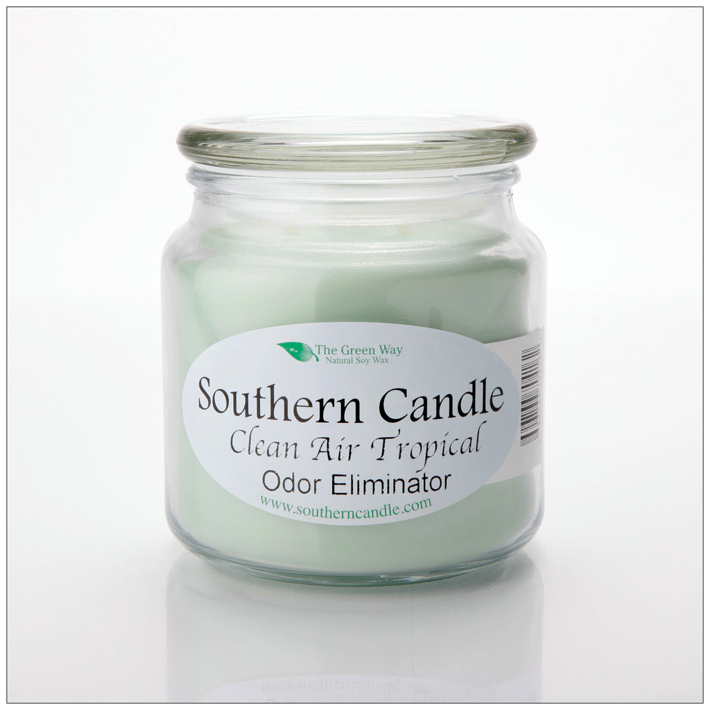 Clean Air Tropical 16 oz Decorator Jar Natural Soy Wax Candle - Southern Candle Classics