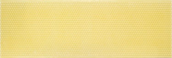 National Hybrid, Beeswax Coated Plastic Foundation, Super, Yellow, 100 Pack