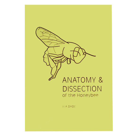 Anatomy & Dissection of the Honeybee - Bee Equipment