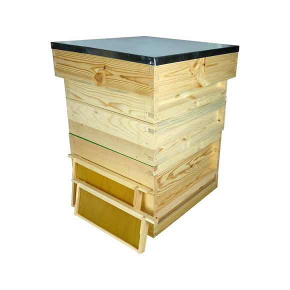 National Complete Hive Kit, Flat, Pine, with Premium Wax Foundation
