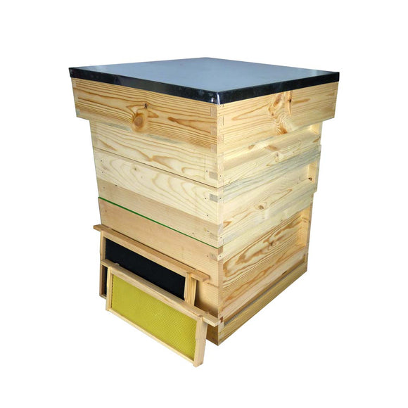 B.S. National Complete Hive Kit, Flat, Pine, With Plastic Foundation