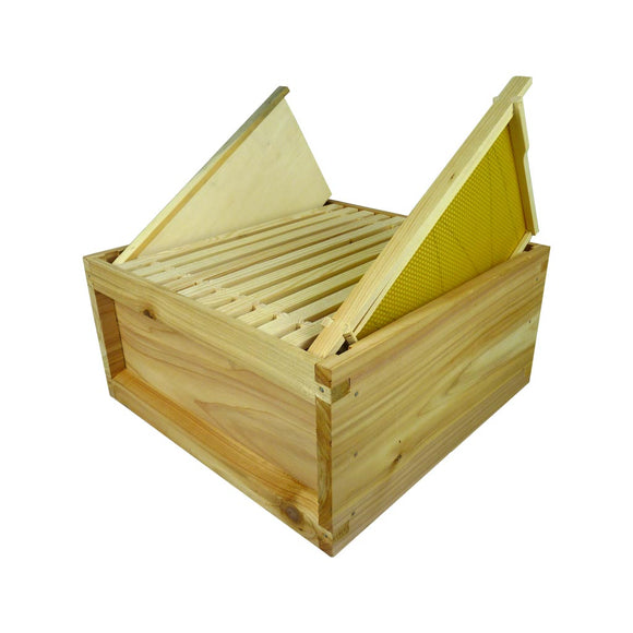 B.S. National Brood Box, Cedar, 2nd Grade, Assembled, with 11 Frames with foundation + Dummy Board - Bee Equipment