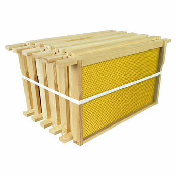 B.S. National Brood Frame, Assembled, With Yellow Plastic Foundation - Bee Equipment