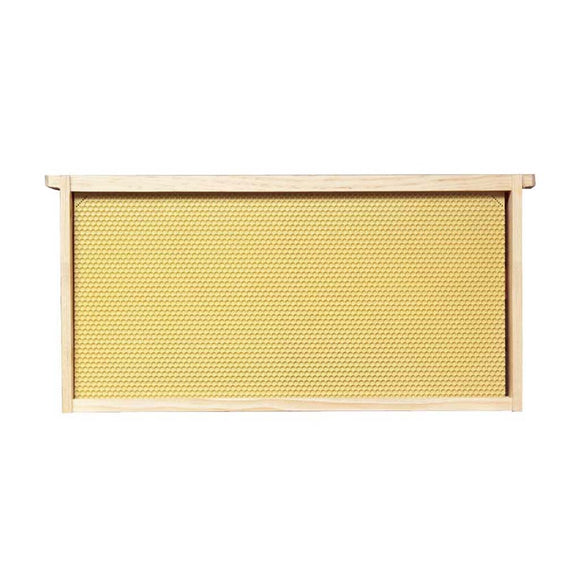 Langstroth Brood Frame, Assembled, with Yellow Beeswax Coated Plastic Foundation