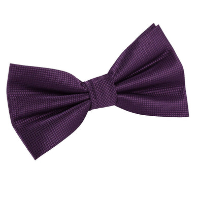 Solid Check Cadbury Purple Bow Tie