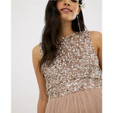 Sleeveless Delicate Sequin & Tulle Dress