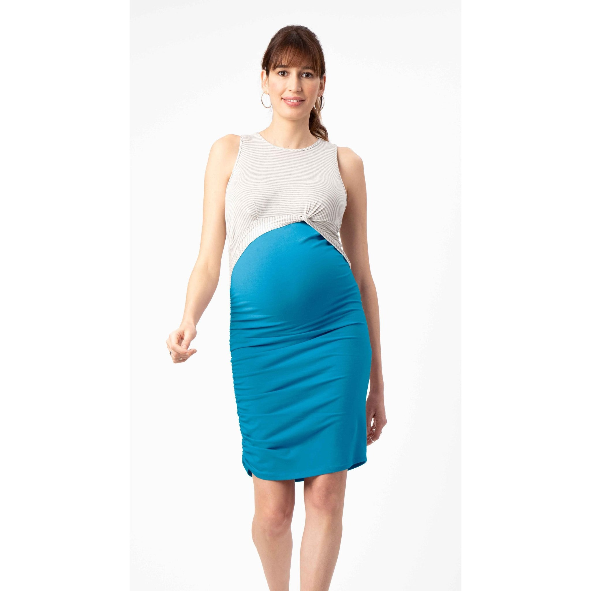 Stowaway Maternity and Nursing Dress