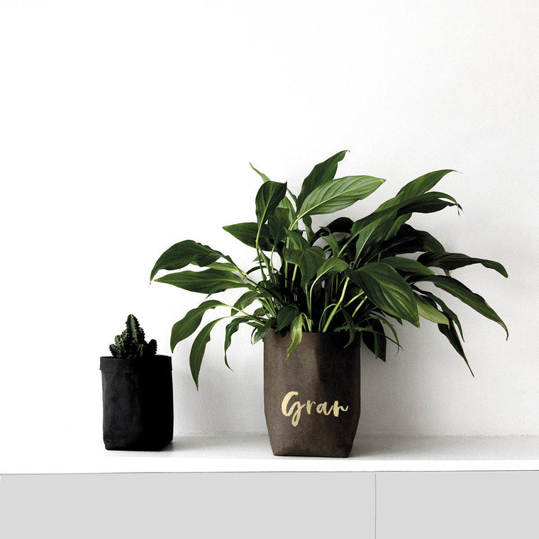 Personalised Paper Plant Pot