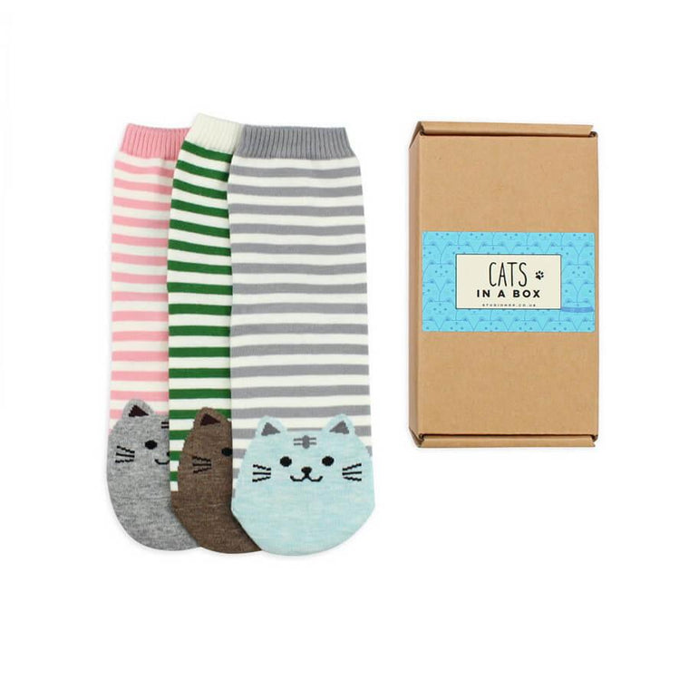 Socks - Cats Sock Gift Box