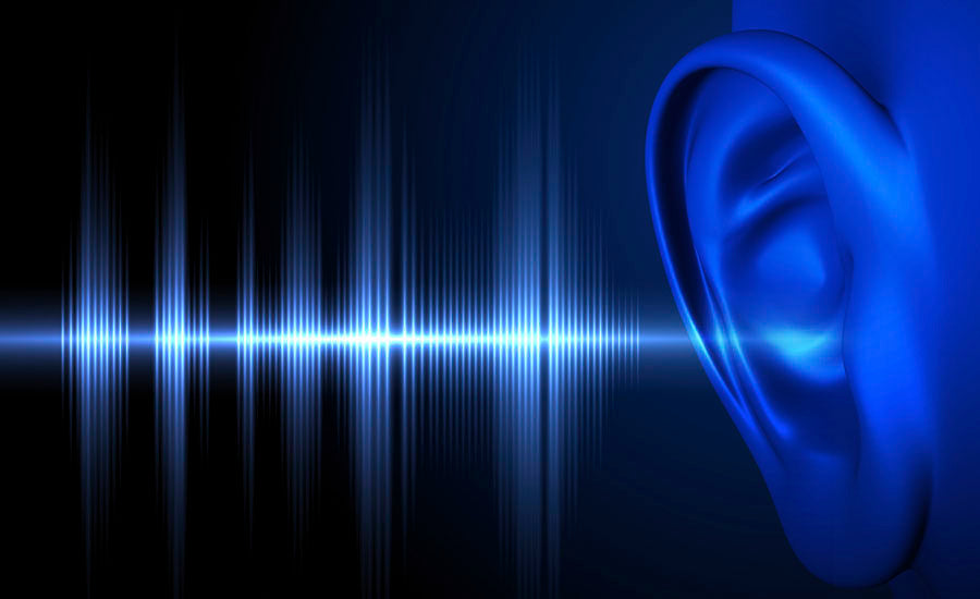 LOUD NOISE CAN DAMAGE HEARING