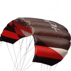 Sting 4 Line Power Kite