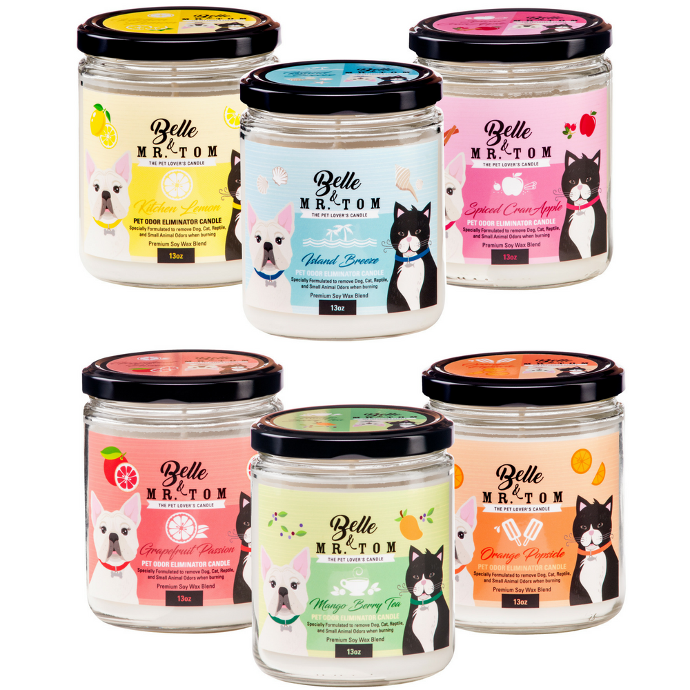 6 Pack: Pet Odor Eliminator Candles (13oz)