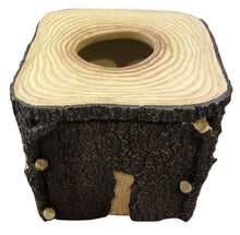 Tissue Box Cover Blonder Home Timberwood Woolrich Tree Stump Woodland