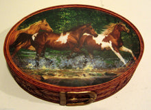 Blonder Home Spring Creek Run Wild Horse Toothbrush Holder Soap Dish Lotion Pump