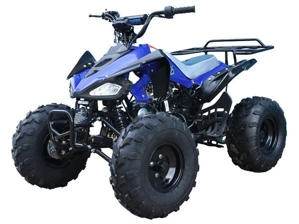 TAO TAO, Cheetah 125-G, Quad à Essence (4 Temps) (110cc) Bleu