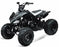 TAO TAO, Cheetah 125-G, Quad à Essence (4 Temps) (110cc) Noir