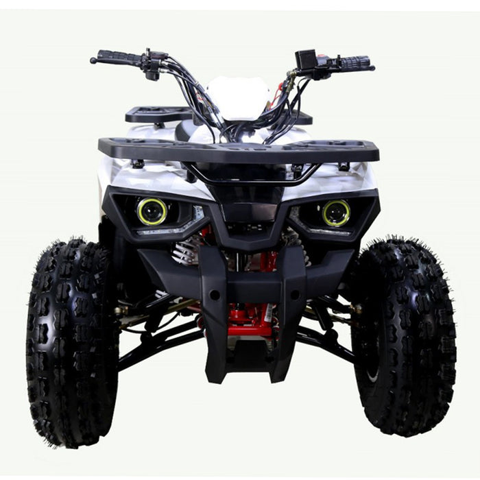 Tao Tao, Raptor 125 Quad à Essence (4 Temps) (125cc)