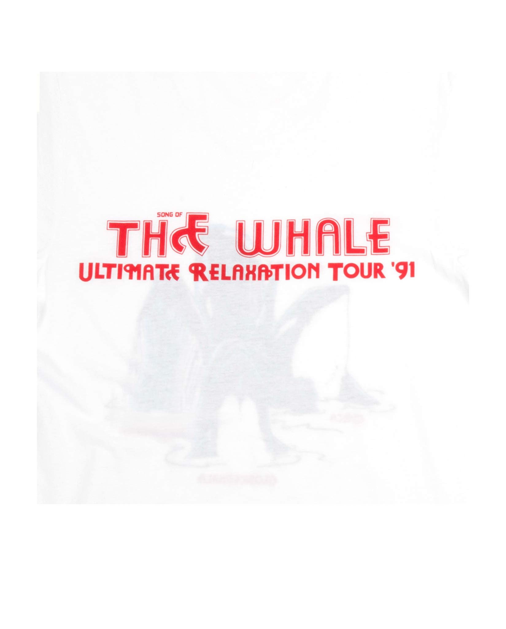 Mirja Rosendahl Song of the Whale tee shirt white-Diverse