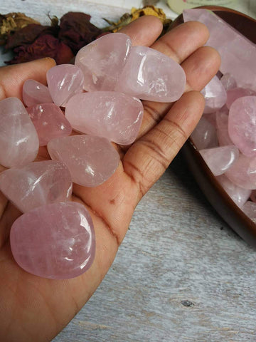 Rose Quartz - Grade A Tumbled Freeform Crystals