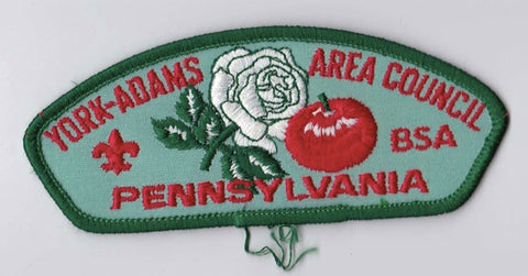 York-Adams Area Council PA Green Border Plastic Backing FDL CSP ## CSP1384