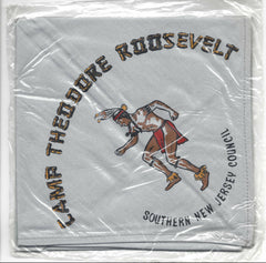 Camp Theodore Roosevelt GRY Neckerchief in bag Southern New Jersey [NY332]