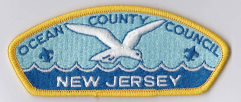 Ocean County Council NJ Yellow Border Plastic Backing FDL CSP ## CSP967