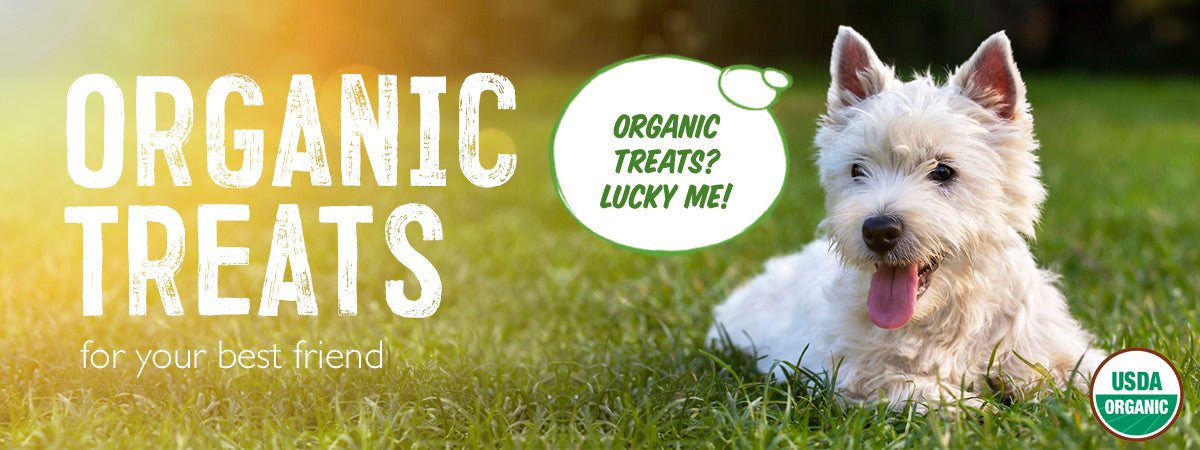 USDA Organic locally made dog treats for your best friend
