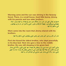 English-Urdu-Bilingual-children's-picture-book-Shelley-Admont-page1