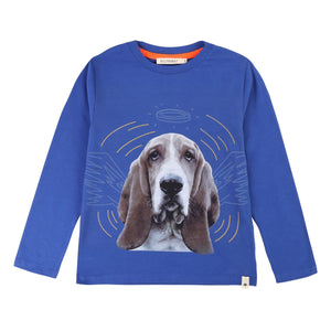 Cute navy blue sweater featuring an angelic basset hound.