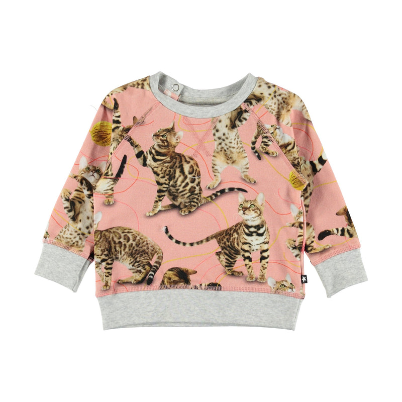 Cute kitten prints on a sweatshirt in pink!
